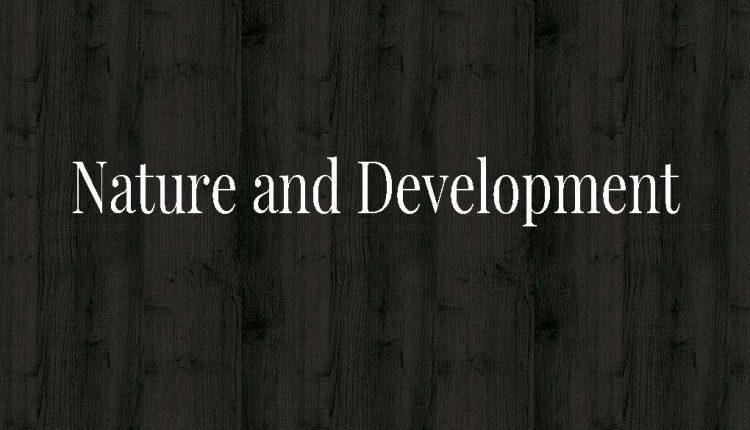 IRIOMOTE-nature-and-development-1