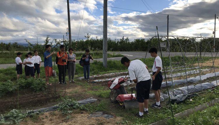 Final report – unforgettable experience in Takahata fieldwork – Shinnosuke Miura-1