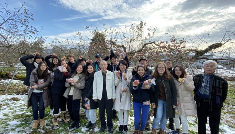 Our class picking apples in Yamagata